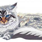 歌と訳詞:Dansons la capucine parフランス語をしゃべる猫