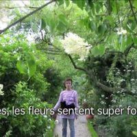 ヴァンセーヌの森の植物園
