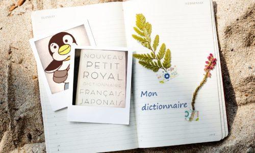 辞書とpen