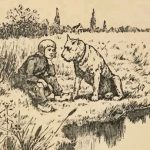 第13回『フランダースの犬』