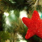 クリスマスツリーはいつ、どうやって処分する?