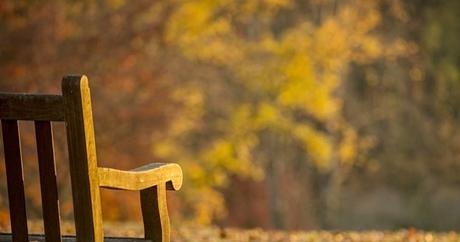 歌と訳詞:秋のさなかに~マリー・ラフォレ