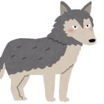 フランス語のことわざ60~オオカミの話をするとそのしっぽが見える(うわさをすれば影)