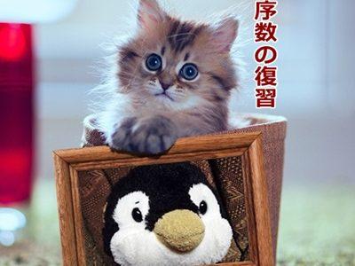 猫とpen