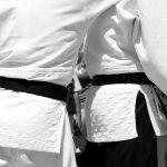 日本チーム、柔道世界選手権で圧勝のニュース