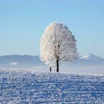 冬(季節の単語)~フランス語の暦(4)