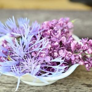 かわいいフランス語、教えます~その12 花の名前