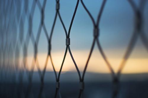 金網のフェンス