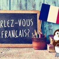フランス語を学ぶペンギン