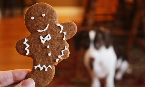 ジンジャーブレッドマンクッキー